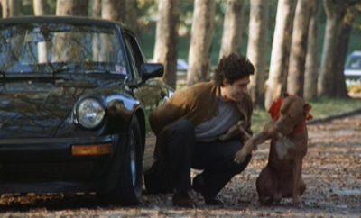 Porsche 911, hond
