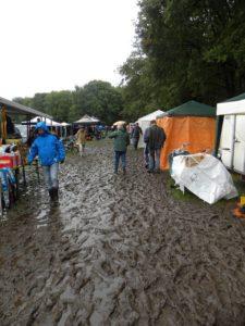 Hardenberg in de regen