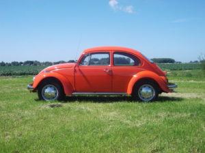 Volkswagen noteerde vooral dankzij de Kever een nummer één positie in de verkoopranglijst voor auto's van 40 jaar en ouder. Afbeelding: Erik van Putten